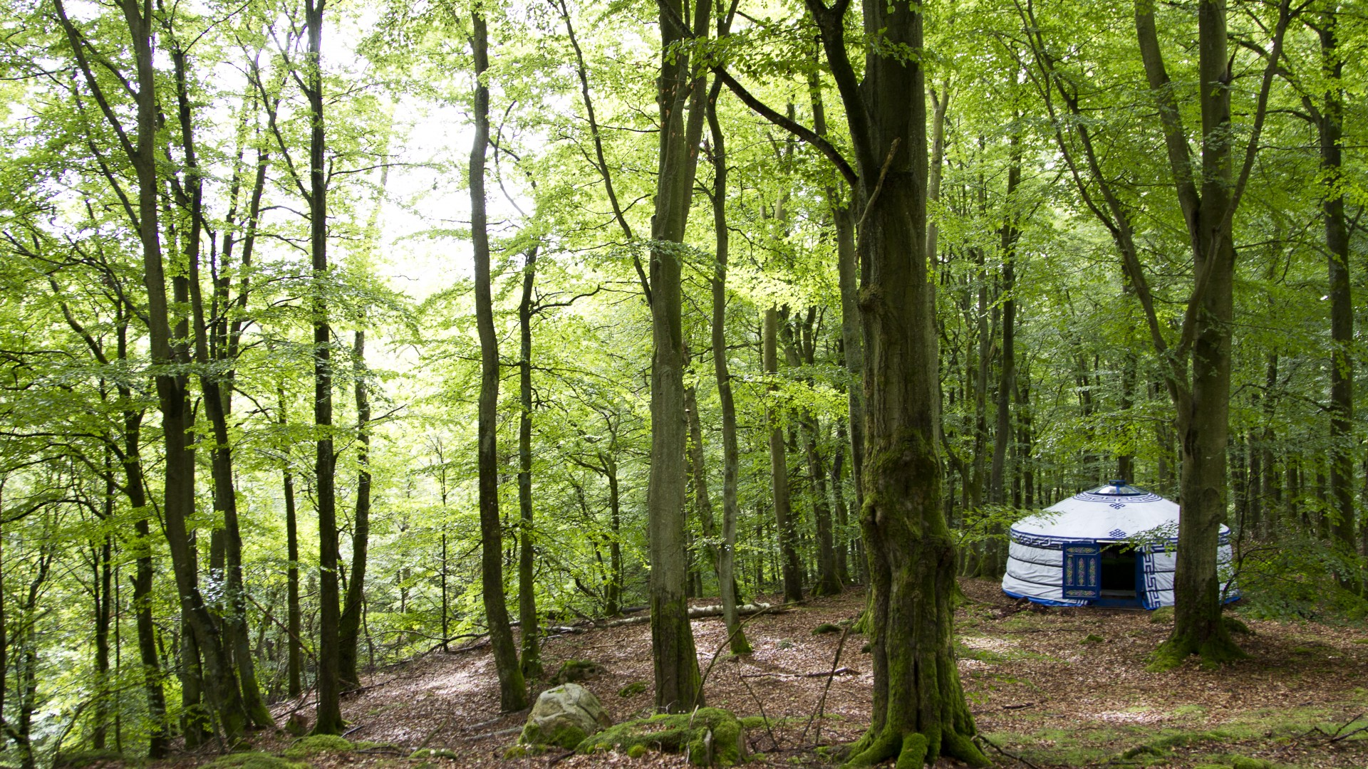 Nyrups Naturhotell - glamping close to nature