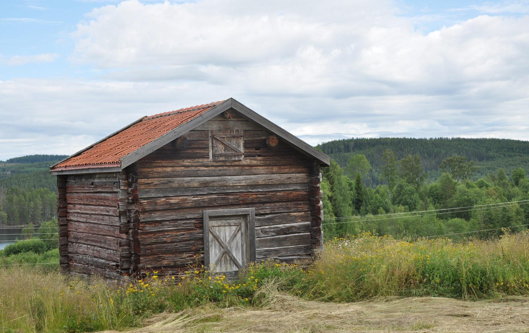 northbound trip - nordwärts vacaciones en Suecia cultura escandinava Familia Amigos norte de Suecia viajar