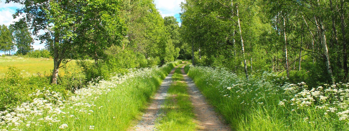 Countryside holiday Småland is a great way to discover Sweden on jämtland, södermanland,