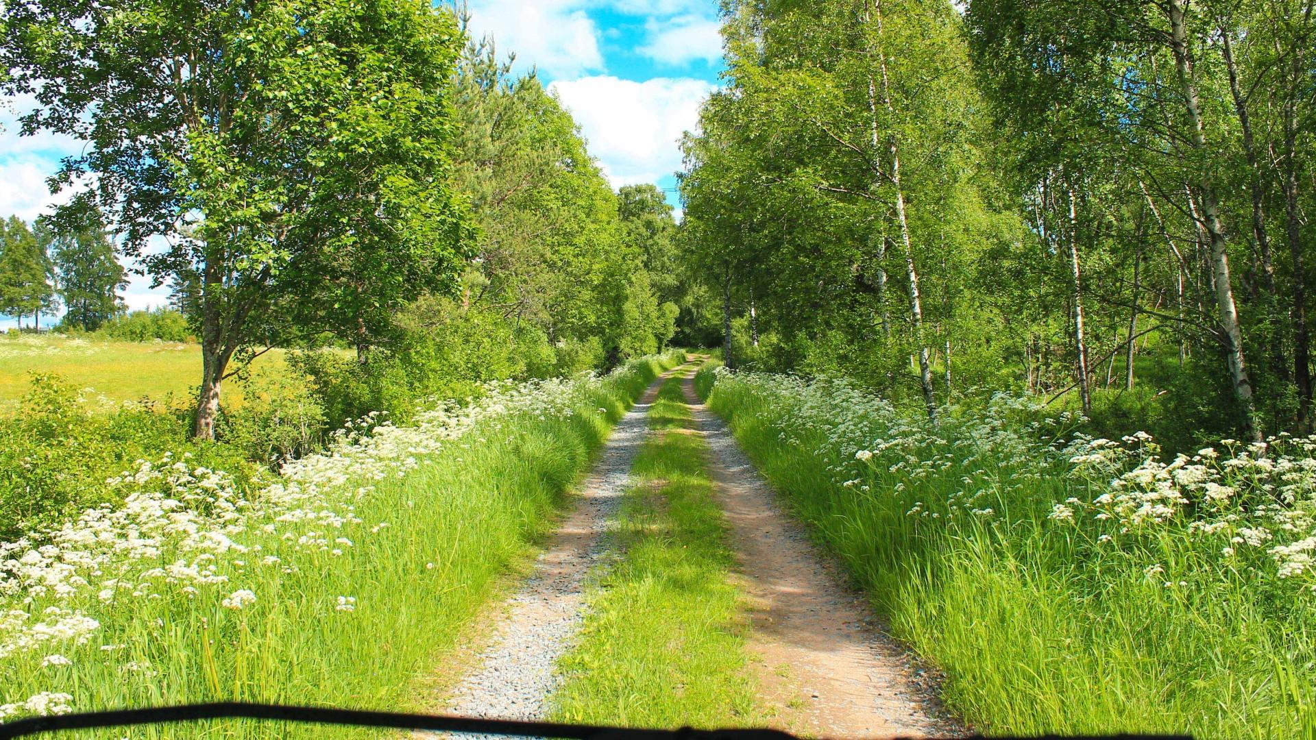 Ccountryside holiday Småland