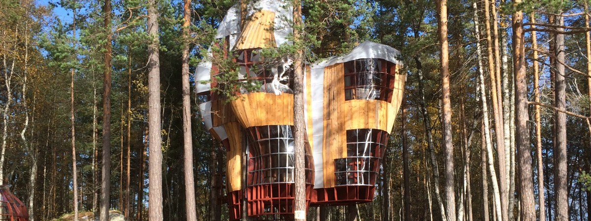 Stay the night in a Tree House