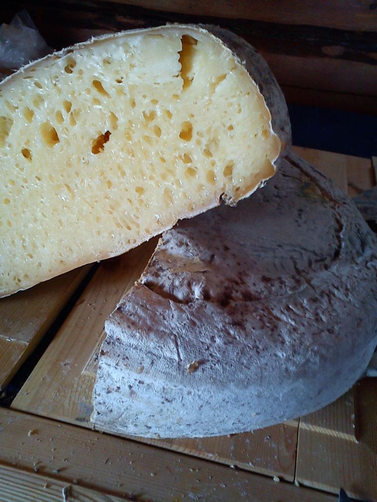 västerbotten cheese sweden strong bitter flavor