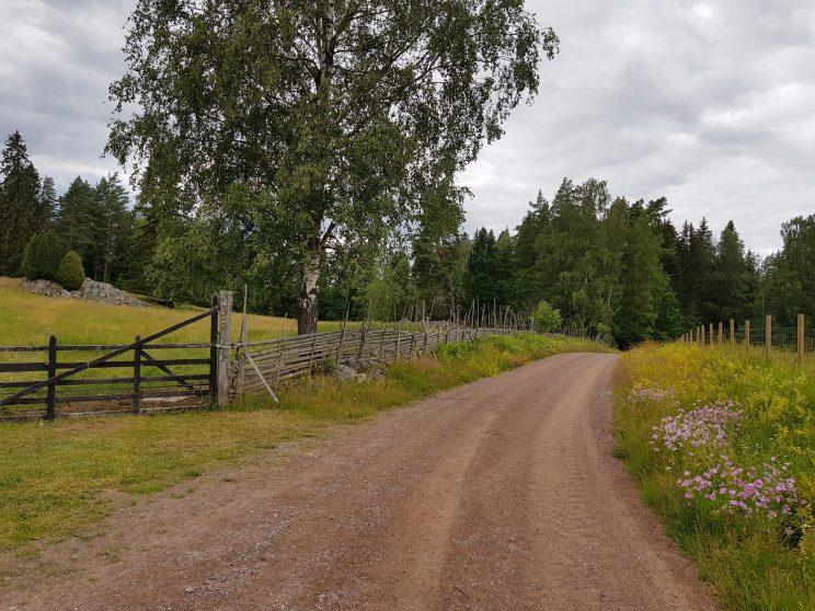biking sweden